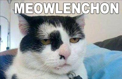 meowlenchon