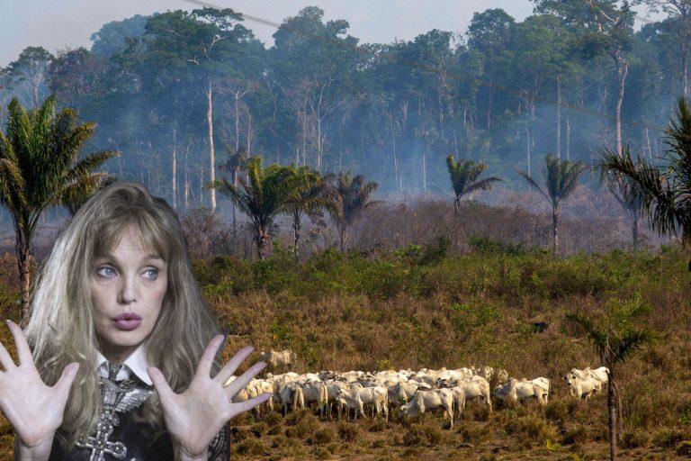 Arielle Dombasle va chanter pour la forêt amazonienne