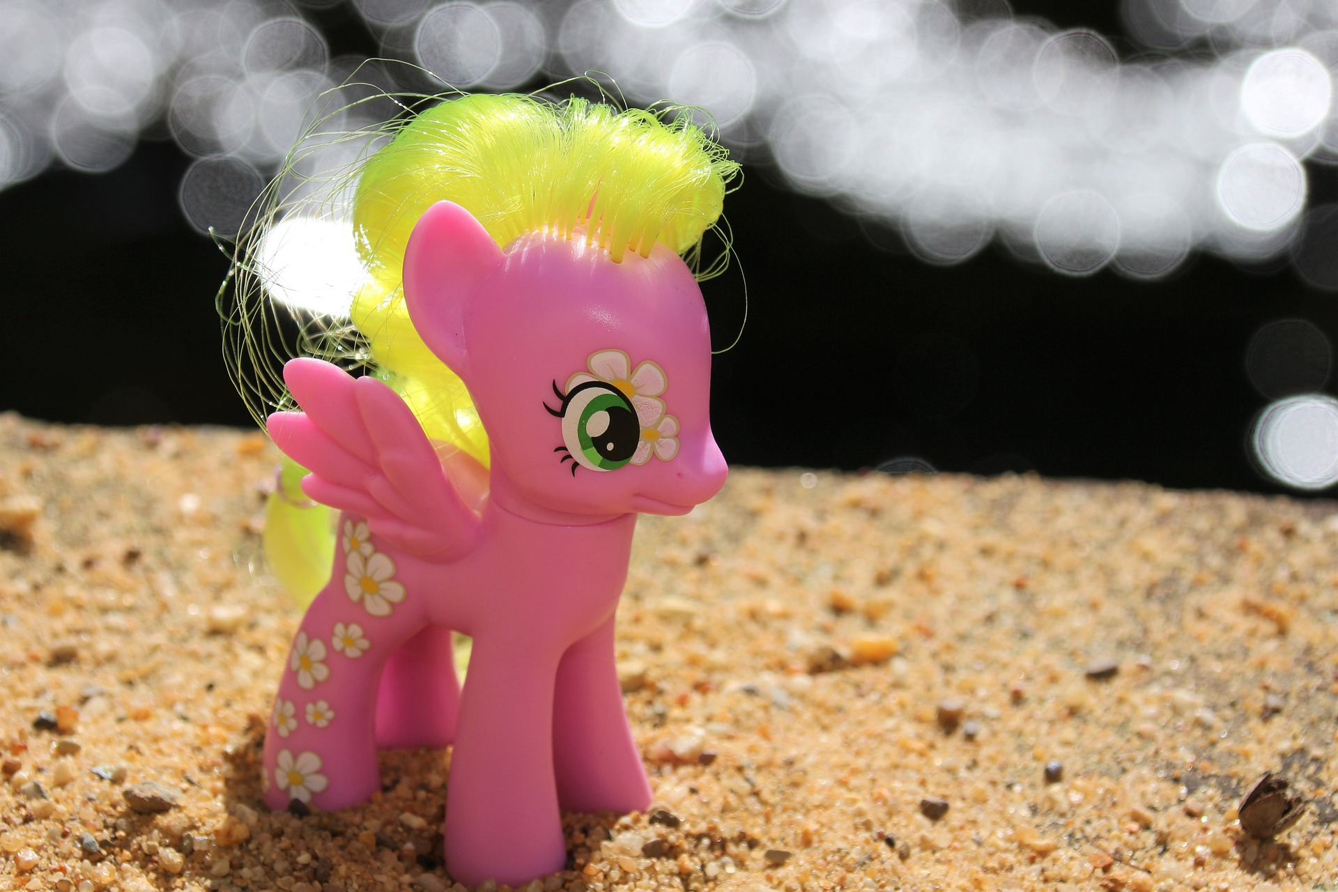pony-5457335_1920